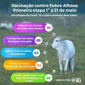 Maio é o mês da primeira etapa da campanha de vacinação contra Febre Aftosa.